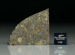 NWA 5206 (7.68 gram)