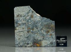 NWA 5495 (11.30  gram)