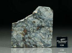 NWA 5495 (10.51  gram)