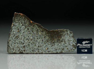 NWA 5496 (4.93 gram)