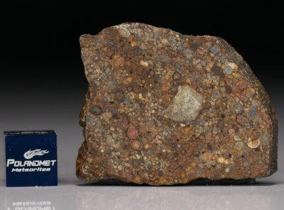 NWA 5205 (8.53 gram)
