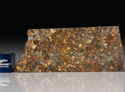 NWA 5205 (12.4 gram)