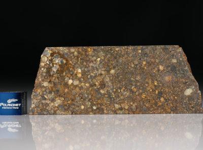 NWA 5205 (20.07 gram)