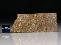 NWA 5205 (12.9 gram)