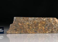 NWA 5205 (15.67 gram)