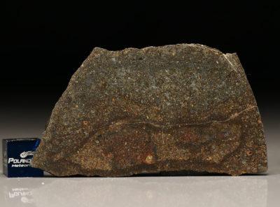 NWA 5505 (14.76 gram)