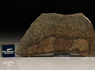 NWA 5505 (13.87 gram)
