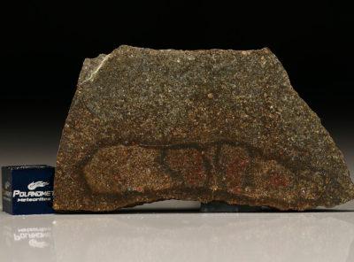 NWA 5505 (14.23 gram)