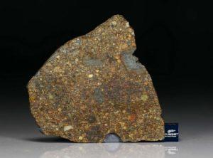 NWA 7158 (26.84 gram)