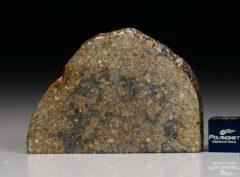 NWA 7160 (16.76 gram)