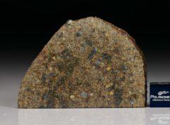 NWA 7160 (19.59  gram)