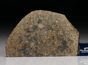 NWA 7160 (22.37  gram)