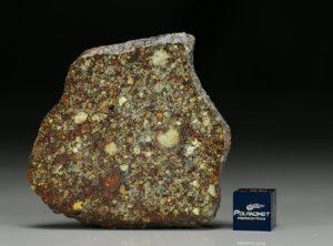 NWA 7814 (18.70   gram)