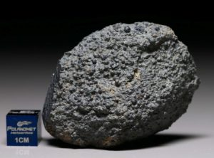 NWA 8214 (62.1 gram)