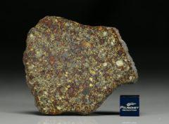 NWA 7814 (16.41 gram)