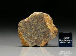 NWA 7813 (10.48 gram)