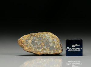 NWA 7813 (7.14 gram)