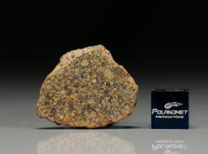 NWA 7813 (6.41  gram)