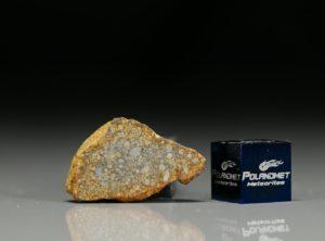 NWA 7813 (3.50  gram)