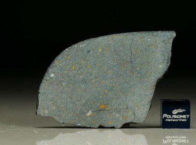 NWA 8221 (9.84 gram)