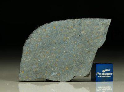 NWA 8221 (11.40 gram)