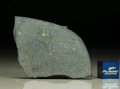NWA 8221 (11.65 gram)