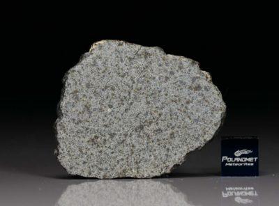NWA 8095 (6.6 gram)