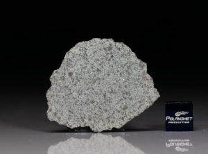 NWA 8095 (6.8 gram)