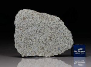 NWA 8095 (7.9 gram)