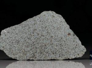 NWA 8095 (20.2 gram)
