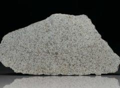 NWA 8095 (22.9 gram)