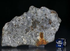 NWA 7168 (20.69 gram)
