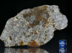 NWA 7168 (40.89 gram)