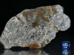 NWA 7168 (41.43 gram)
