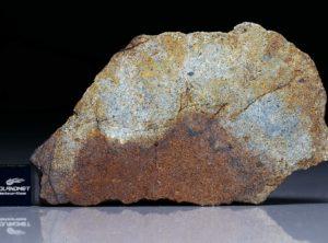 NWA 4561 (27.49 gram)