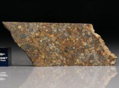NWA 5205 (7.06 gram)