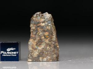 NWA 5205 (3.26 gram)