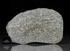 NWA 6255 (43.56 gram)