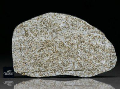 NWA 6255 (38.69 gram)