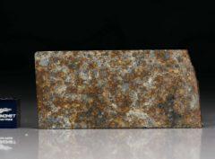 NWA 4505 (14.12 gram)
