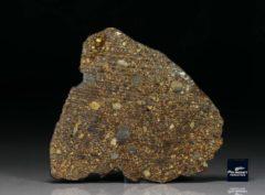 NWA 7158 (26.04 gram)
