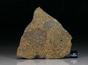 NWA 7158 (22.84 gram)