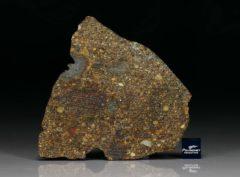NWA 7158 (25.02 gram)