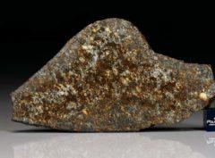 NWA 7162 (27.80   gram)