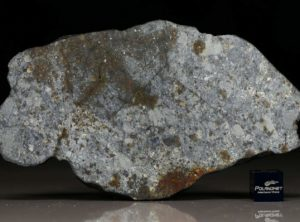 NWA 7168 (41.48 gram)