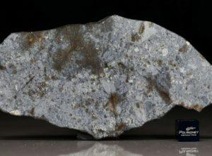 NWA 7168 (40.90 gram)