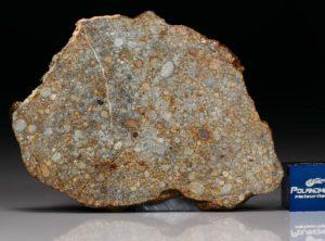 NWA 7171 (17.36 gram)