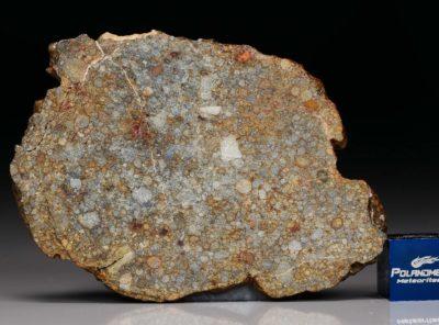NWA 7171 (16.61 gram)
