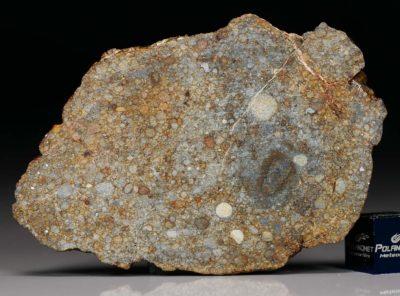 NWA 7171 (22.67 gram)