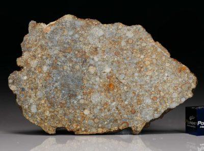 NWA 7171 (17.31 gram)
